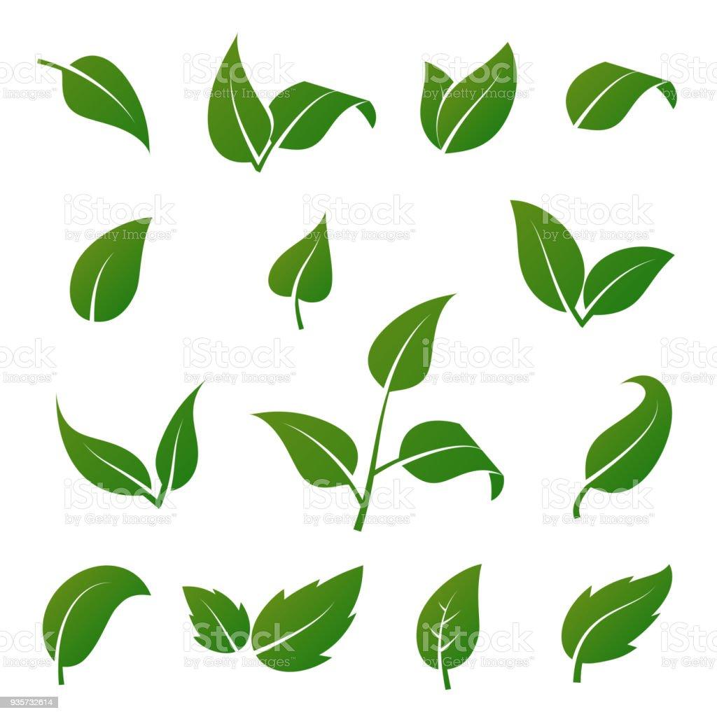 Photo Designer To Add Artist: Ilustración De Verde De árboles Y Plantas Hojas Vector