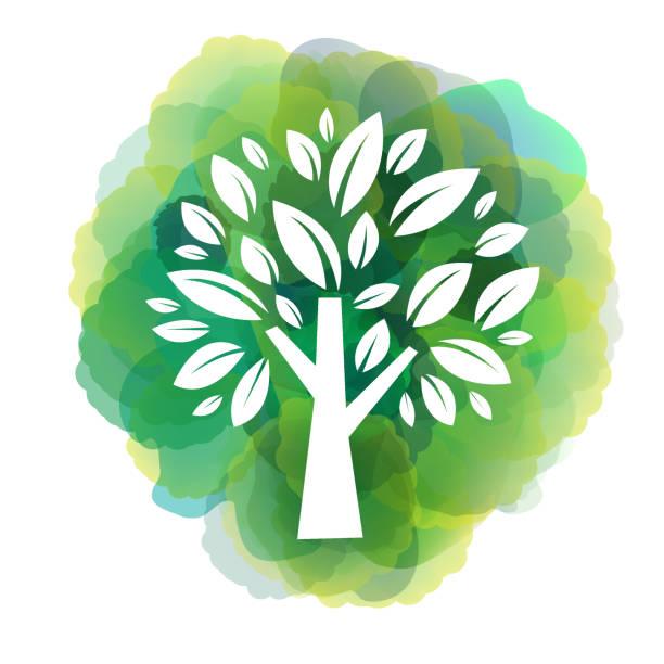 ilustrações de stock, clip art, desenhos animados e ícones de green tree icon on watercolor background - plantar