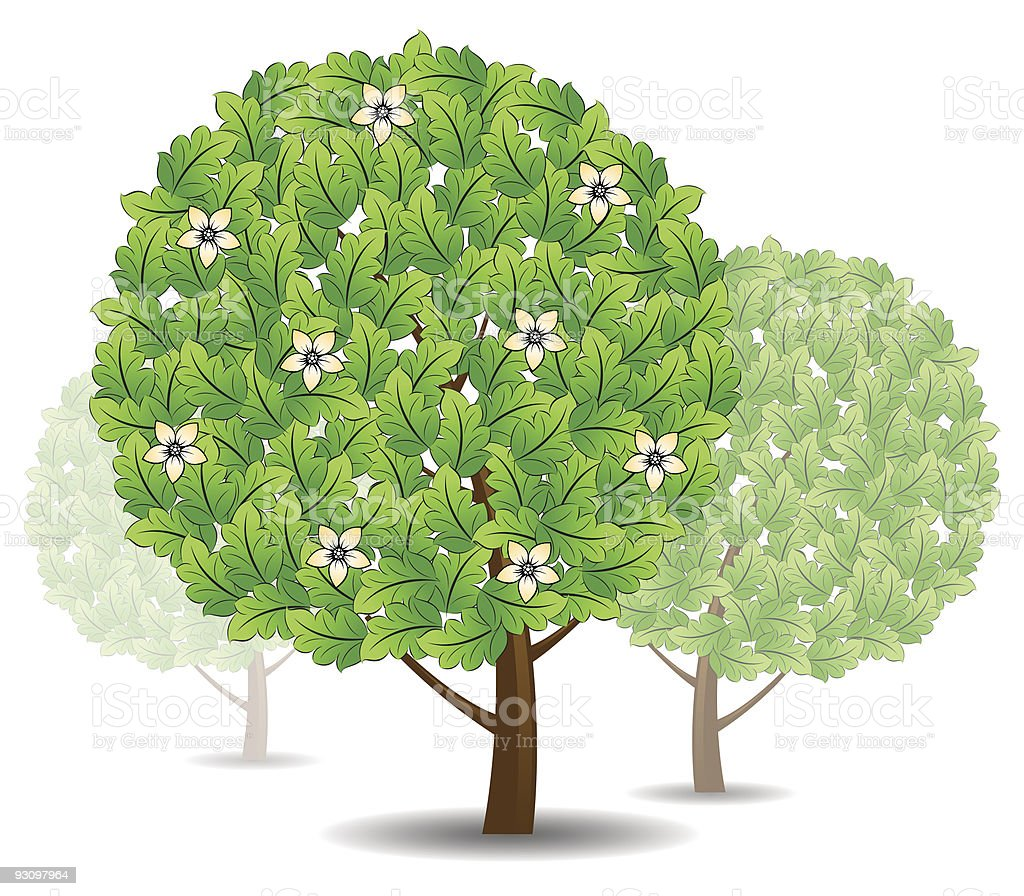 Green tree icon royalty-free green tree icon stock vector art & more images of art