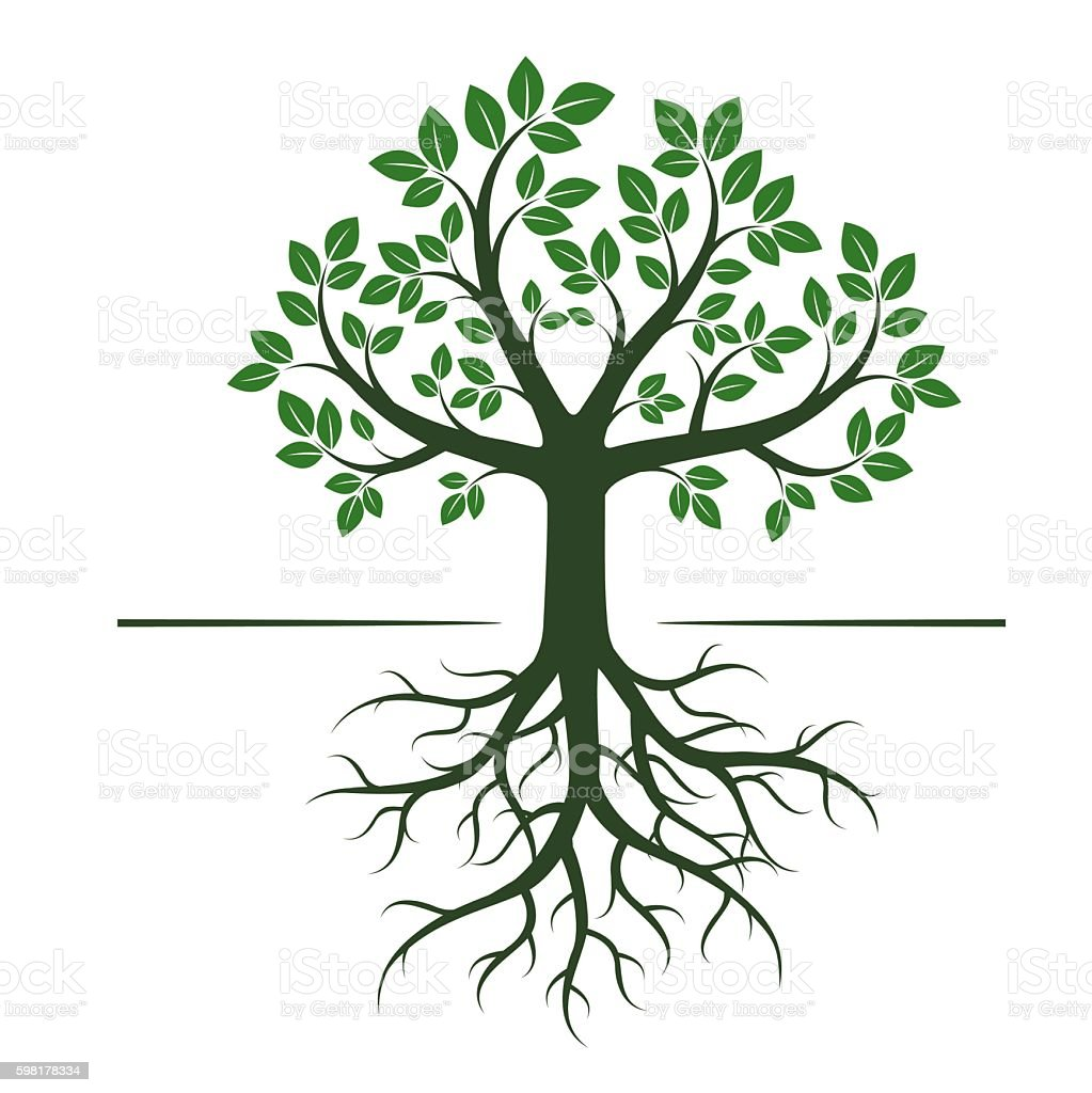 Green Tree. Vector Illustration. vector art illustration