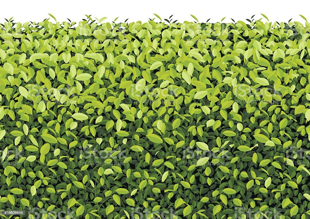 Green Tree Wall on isolated Vector vector art illustration