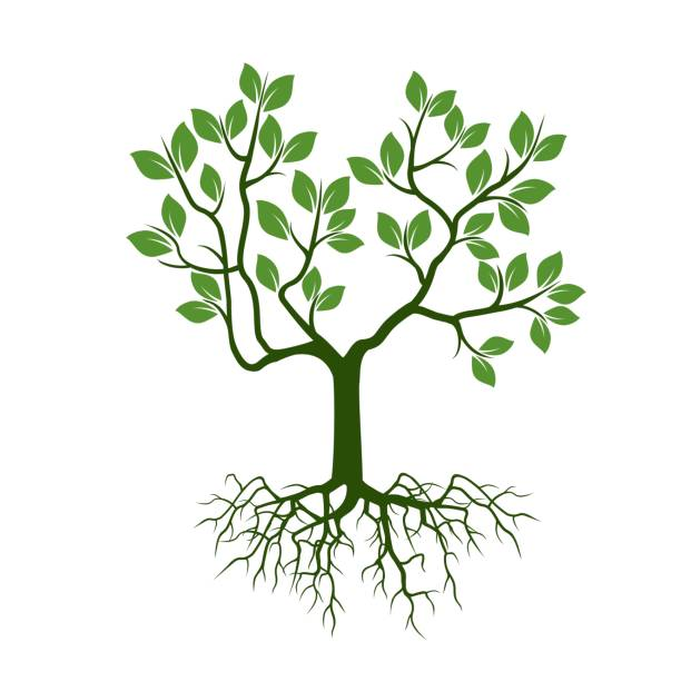 green tree with leafs and roots. - stripped pattern stock illustrations, clip art, cartoons, & icons
