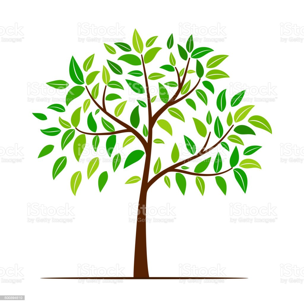 green tree with leaves stock vector art amp more images of