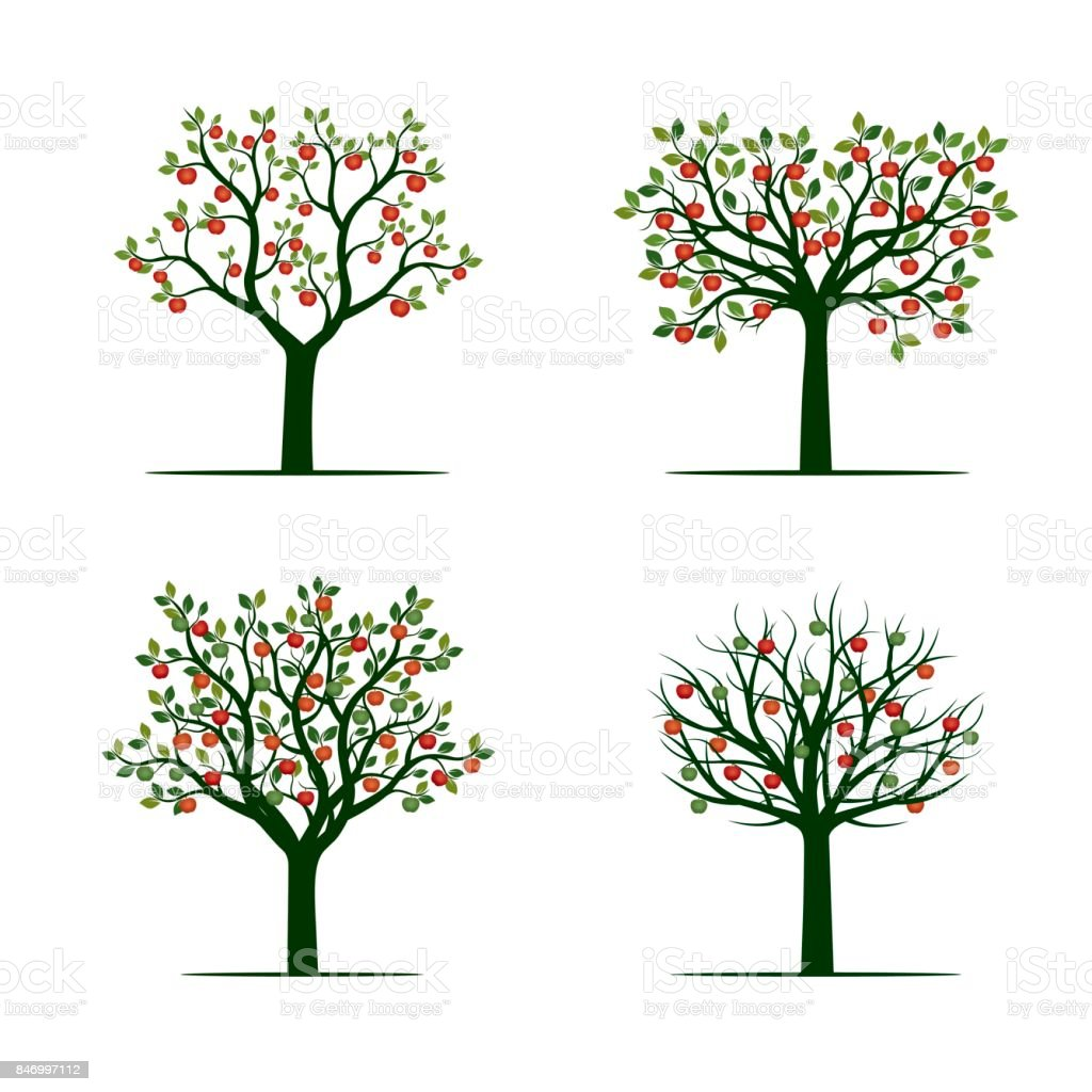 Green Tree with red Apples. Vector Illustration. vector art illustration