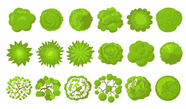 緑の木セット - 森林 俯瞰点のイラスト素材/クリップアート素材/マンガ素材/アイコン素材