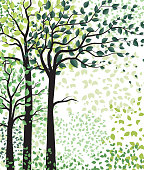 Vector illustration of green trees. Landscape background with forest