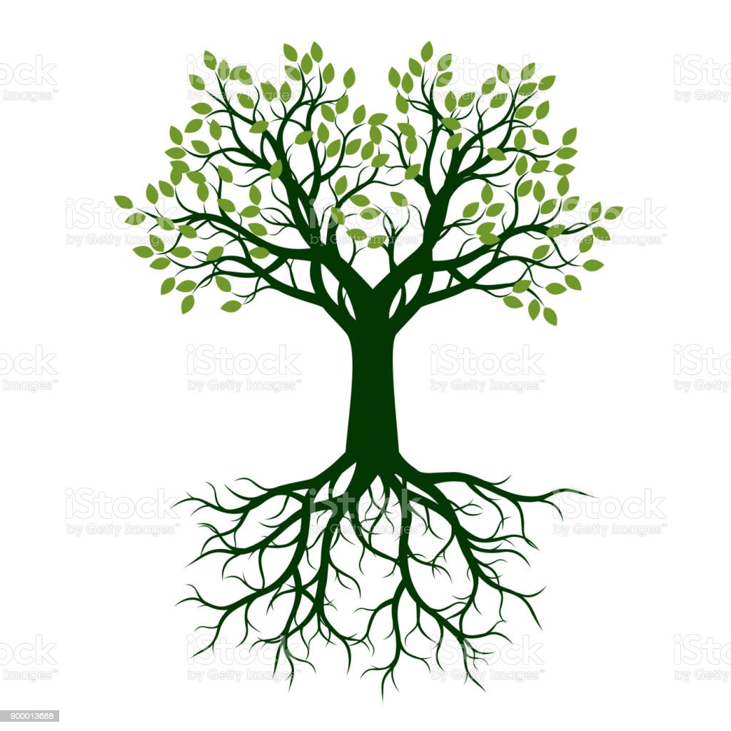 Green Trees with Leaves. vector art illustration