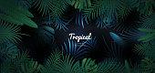 Green tropical floral banner on dark background