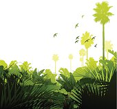 Tropical jungle background with palm trees and birds. Global colours are easily modified.