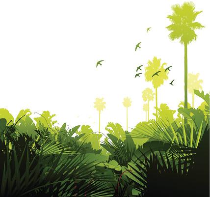 Зеленый Тропических Джунгли — стоковая векторная графика и другие изображения на тему Без людей