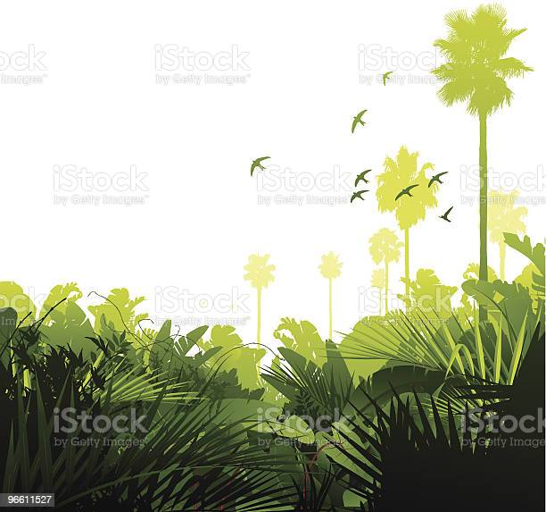 Green Tropical Jungle-vektorgrafik och fler bilder på Bildbakgrund