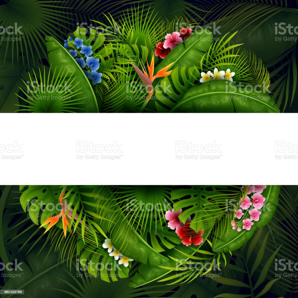 Vector illustration of Green Tropical leaves and flower. Vector...
