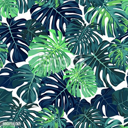 green vector pattern with monstera palm leaves on dark
