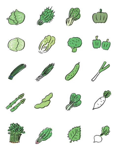 green vegetables icon It is an icon of ingredients that can be used for cooking and recipe explanation.hand-drawn. scallion stock illustrations