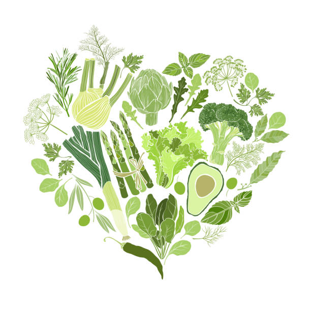 Green vegetables, spices and culinary herbs. Food  background. Vector illustration of heart shape. Green vegetables and spices. Vector food background, element for design, sticker. avocado silhouettes stock illustrations