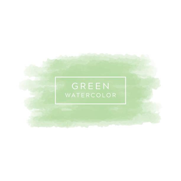 Green watercolor background Vector watercolor background. Colorful abstract vector, Beautiful watercolor design element. Green watercolor background watercolor background stock illustrations