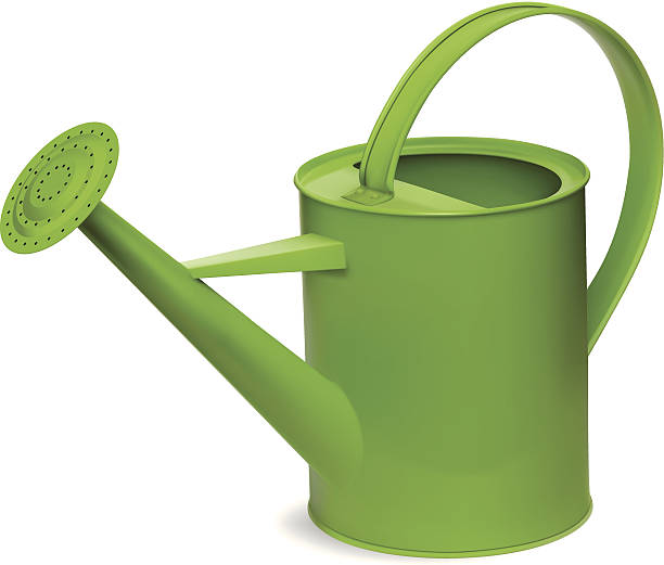 Royalty Free Watering Can Clip Art Vector Images Illustrations Istock