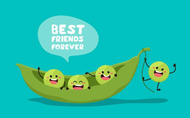 ilustrações de stock, clip art, desenhos animados e ícones de green young peas with the slogan best friends forever. vector illustration in cartoon style. . cheerful peas. - ervilha
