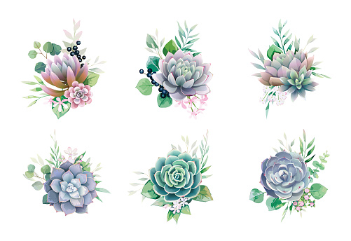Greenery and succulent, romantic bouquets for wedding invite or greeting card. element set.