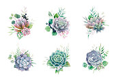 Greenery and succulent, romantic bouquets for wedding invite or greeting card. element set. vector.
