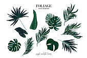 istock Greenery plant set of exotic tropical leaves isolated on white background. Watercolor hand drawn illustration banana leaf, monstera, ficus, coconut palm in vector 1220709382