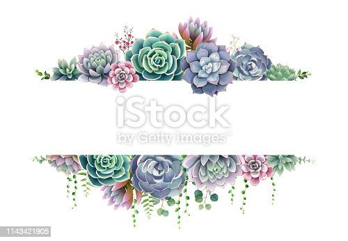 Greenery, succulent and branches frame border on white background. Beautiful template for invite or greeting card, banner, backdrop. All elements are isolated and editable. Vector