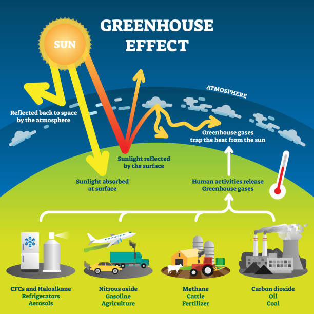 illustrazioni stock, clip art, cartoni animati e icone di tendenza di greenhouse effect vector illustration diagram - climate change