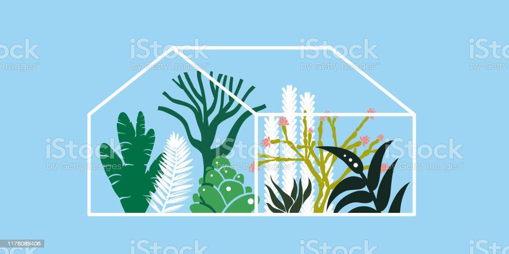 Kas met cactussen, vetplanten en palmbomen. Tropisch huis voor planten. Vector illustratie. - Royalty-free Binnenopname vectorkunst