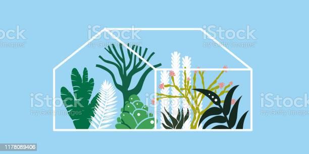 Kas Met Cactussen Vetplanten En Palmbomen Tropisch Huis Voor Planten Vector Illustratie Stockvectorkunst en meer beelden van Binnenopname