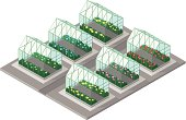 A vector illustration of various greenhouses containing plants and flowers at a farm or garden center.