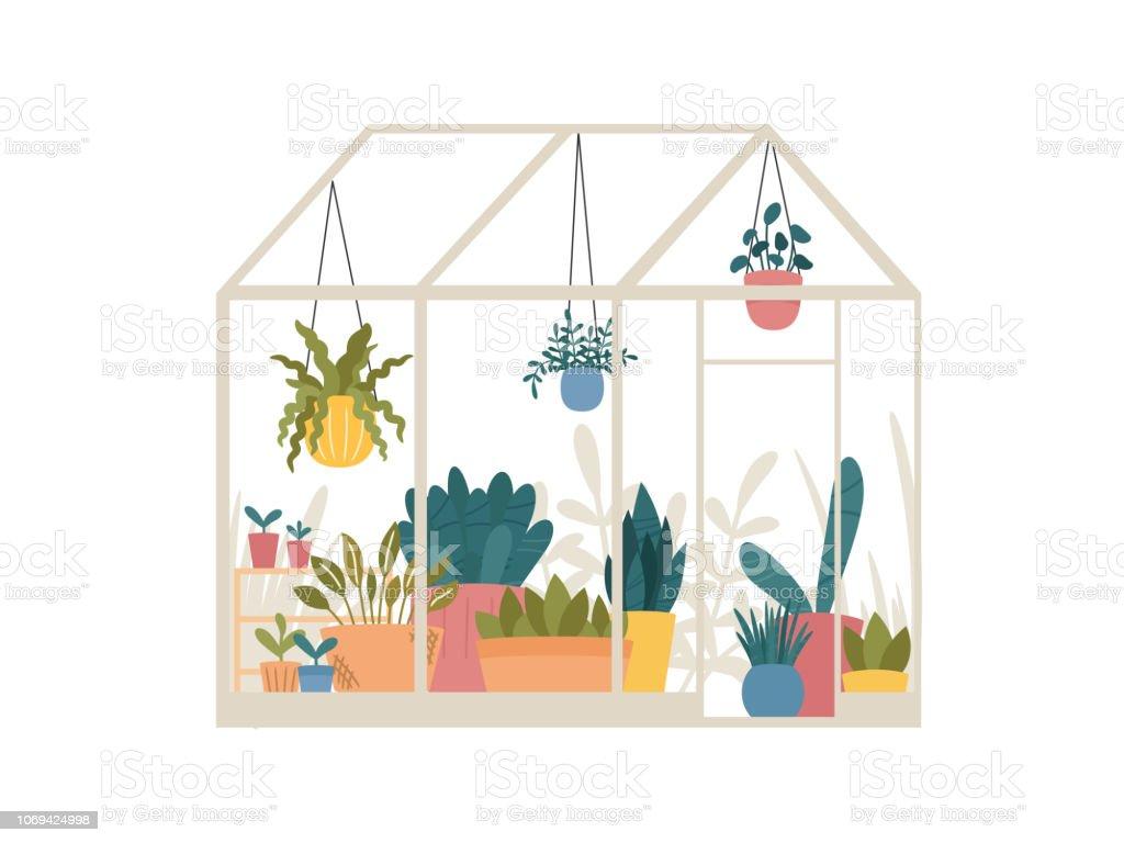 Broeikasgassen met ingegoten en ophanging tuinplanten vectorillustratie, schattige Scandinavische Hygge stijl. Glas groen huis wenskaart seizoensgebonden. Serre met het kweken van planten in potten en plantenbakken - Royalty-free Achtergrond - Thema vectorkunst