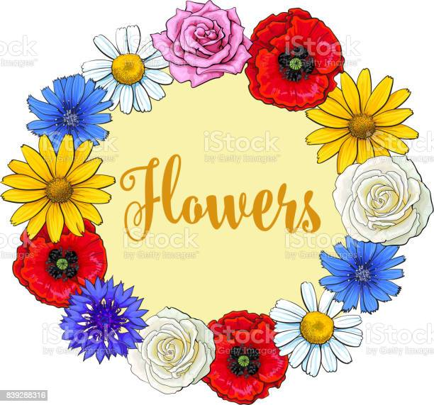 Greeting card postcard template with wreath of wild garden flowers vector id839288316?b=1&k=6&m=839288316&s=612x612&h=hvjjqrtz7ptjroyfdpcydf4s74xyom5slbdyt0bm2s8=