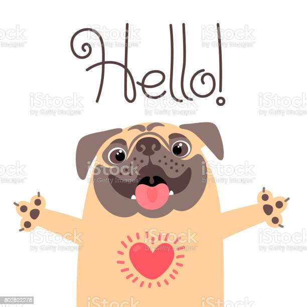 Greeting card with cute dog sweet pug says hello vector id802822278?b=1&k=6&m=802822278&s=612x612&h=fpwytkbb6hgsrsie9u71aoc9jimw98bfsp4 amy3m6i=
