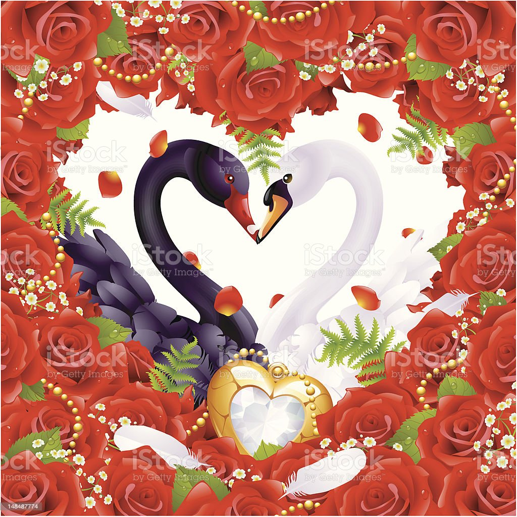 Greeting card with swans in love royalty-free stock vector art