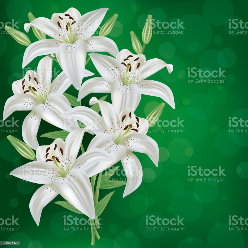 Greeting Or Invitation Card With Bouquet Lily Flower Stock Vector ...