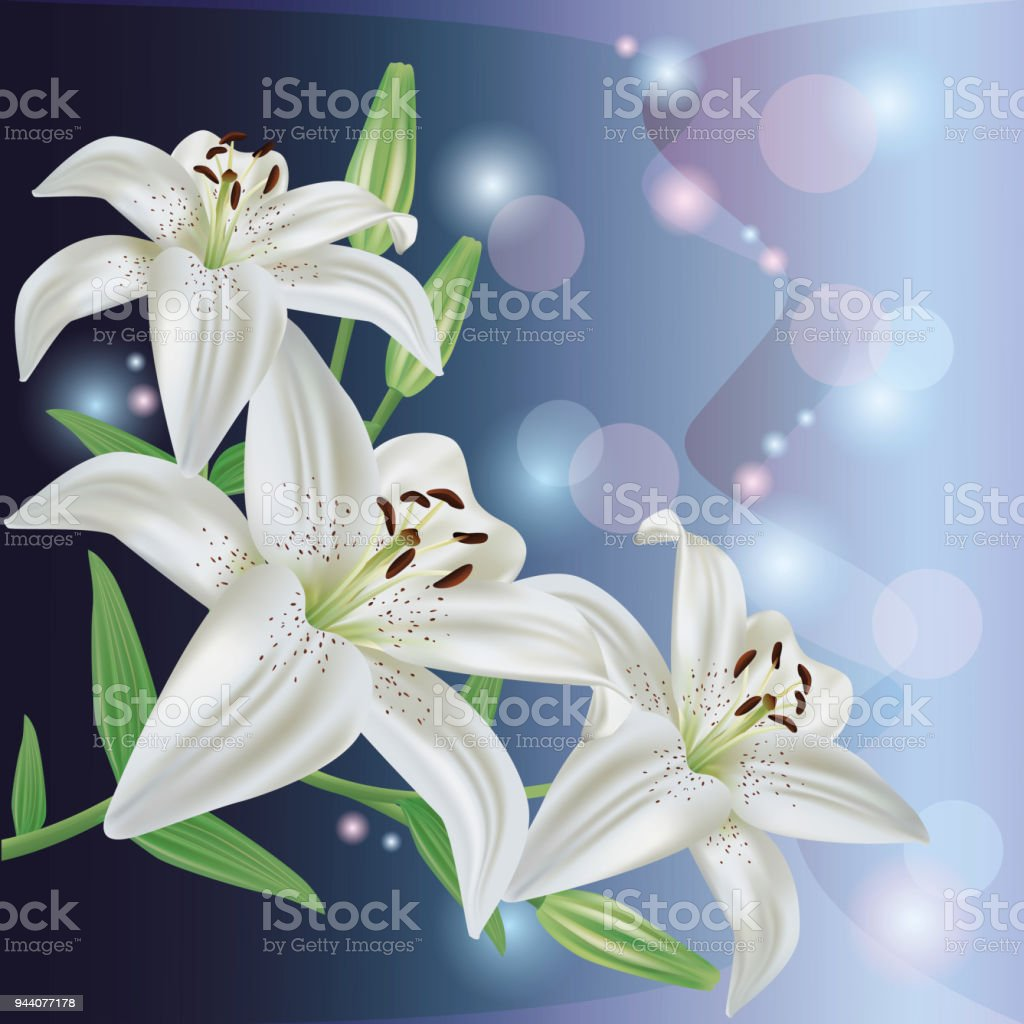 Greeting or invitation card with lily flower vector stock vector art greeting or invitation card with lily flower vector royalty free greeting or invitation card izmirmasajfo