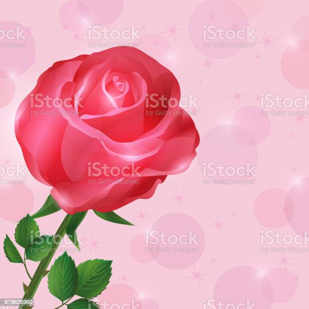 Greeting or invitation card with rose vector id878626960?b=1&k=6&m=878626960&s=612x612&h=uewifoz3lklcucge9zzbbw60jq bfpgaztngt0t7adg=