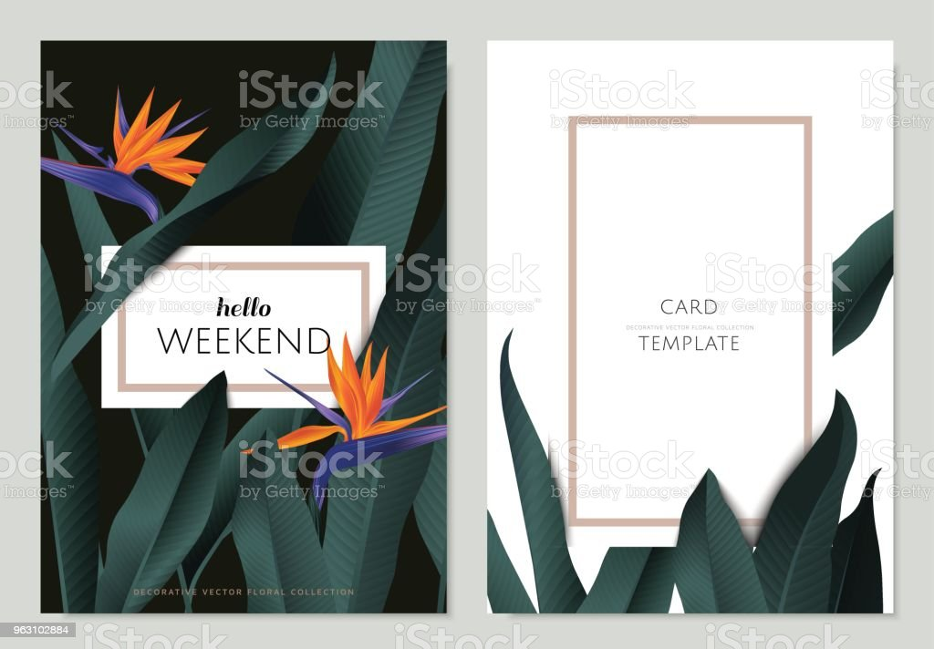 Greeting/invitation card template design, Bird of paradise flowers with leaves on black and white background with frame vector art illustration