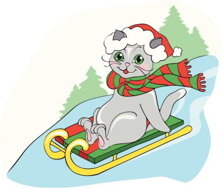 grey cat on sledge