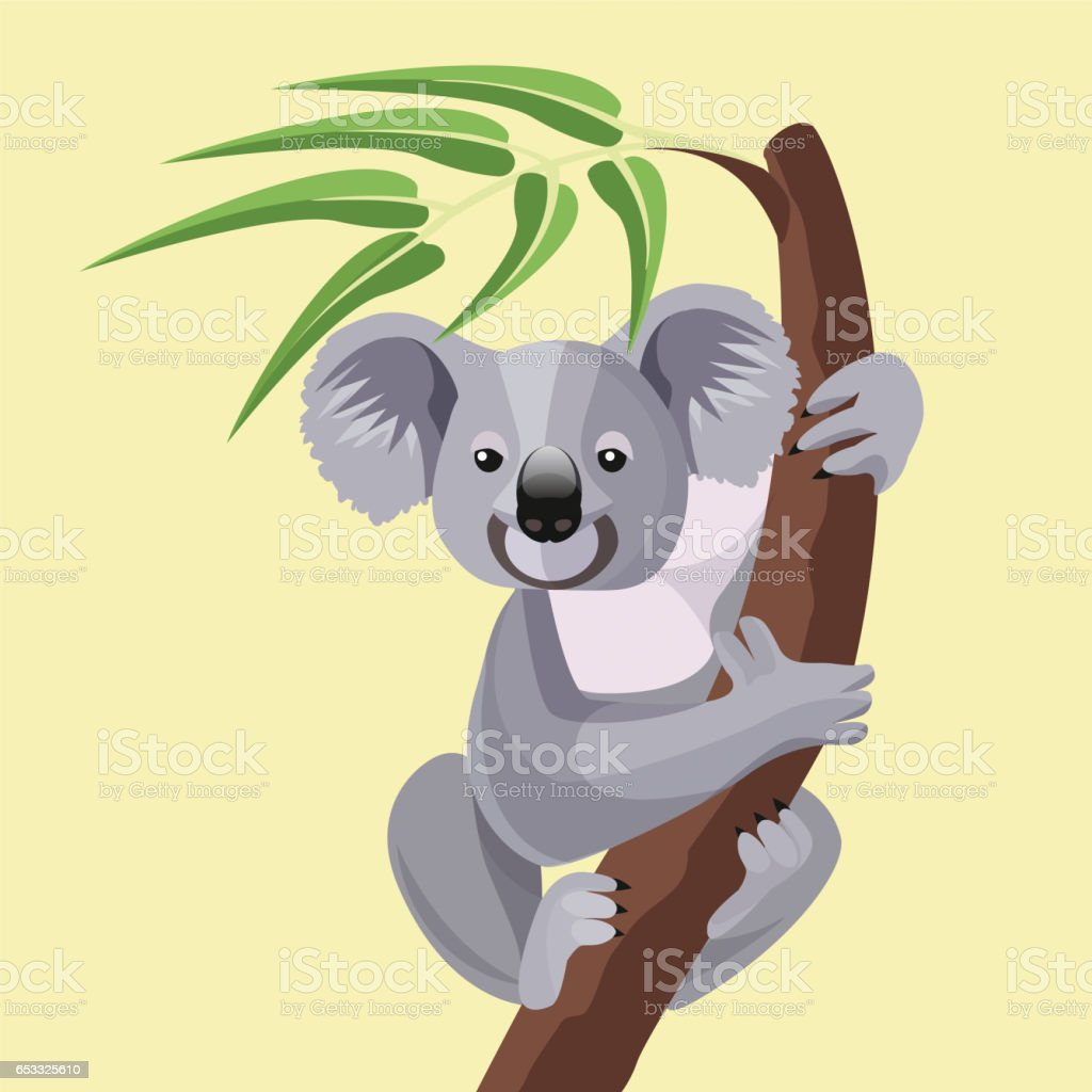 Grey koala bear isolated on wood branch with green leaves vector art illustration