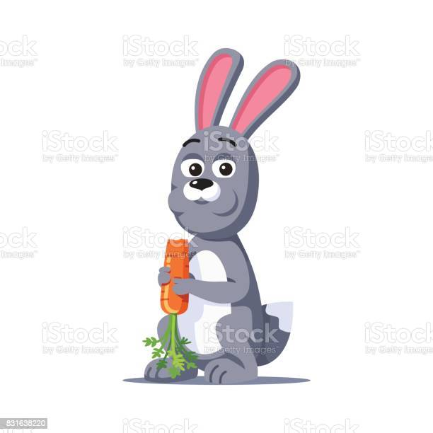 Grey rabbit holding in paws and eating carrot vector id831638220?b=1&k=6&m=831638220&s=612x612&h=vvhd38w5hqraeky8r5w2urjgdwd rk659p4cs45  pi=