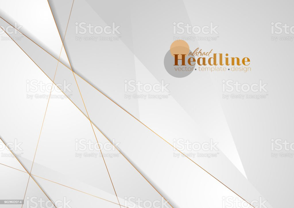 Grey silver abstract luxury background with bronze outlines vector art illustration