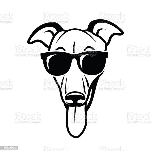 Greyhound dog wearing sunglasses isolated vector illustration vector id1152268544?b=1&k=6&m=1152268544&s=612x612&h=ee ectlmpdugky0r0i dp8ubky1xsbvor t7jh07dbq=