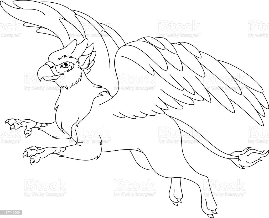 griffin coloring page royalty free stock vector art