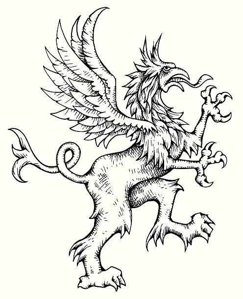 d. griffin - 그리핀 stock illustrations