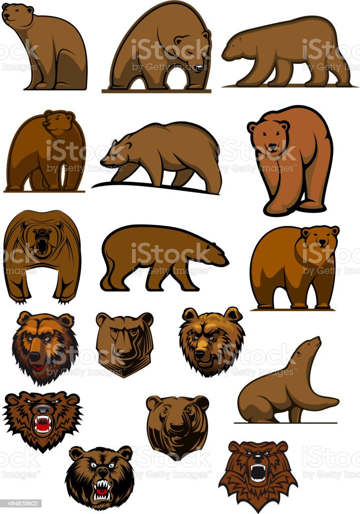 Grizzly and brown bear characters vektorkonstillustration