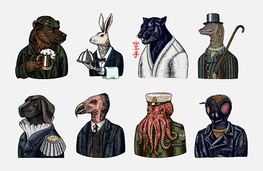 Grizzly Bear with a beer mug. Octopus sailor and Hare or Rabbit waiter. Dog officer and bird. Black panther and Bee biker. Japanese text means: karate. Fashion animal character. Hand drawn sketch