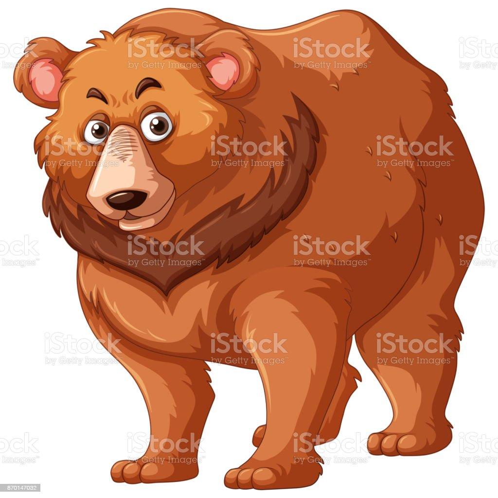 Grizzlybär Mit Braunem Fell Stock Vektor Art und mehr Bilder von ...