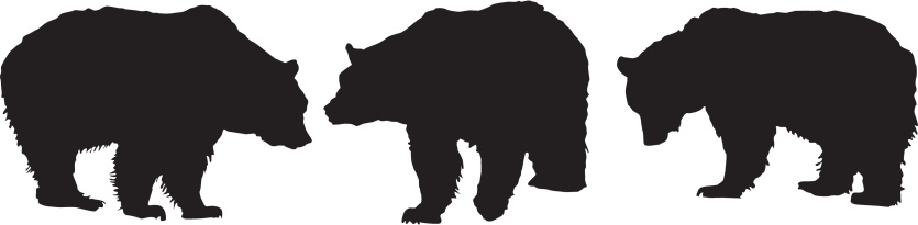 Grizzly Bears - Silhouette