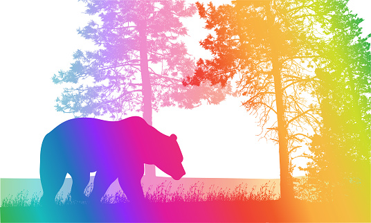 Grizzly Life Rainbow